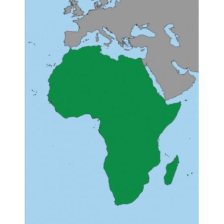 Afryka - 50 x 65 cm - mapa Montessori