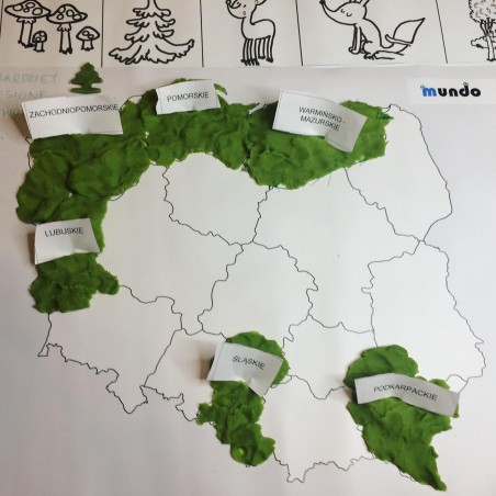 Poland - Administrative washable map - 130x100 cm