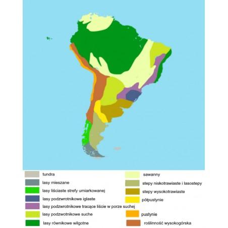 Ameryka Południowa - mapa biomowa - 50 x 65 cm