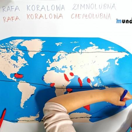 Mapa Świata  - 200x135 cm - mapa konturowa