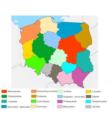 Mapa Polski - 130 x 100 cm - mapa administracyjna kolor, tło