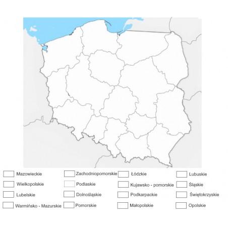 Mapa Polski - 130 x 100 cm - mapa administracyjna do kolorowania, tło