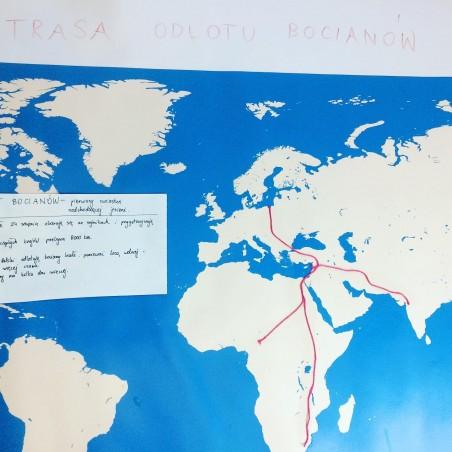 Mapa Świata - 40x67 cm - mapa konturowa