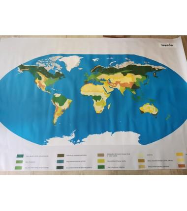 OUTLET - Mapa Świata BIOMY - 200 x 135 cm