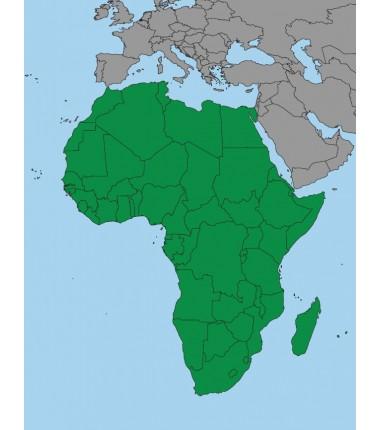 Afryka - 50 x 65 cm - mapa polityczna Montessori