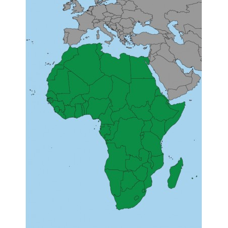 copy of Africa - washable Montessori map 65 x 50 cm