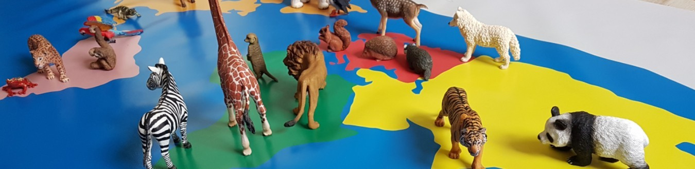Maty edukacyjne - Montessori - Mundo